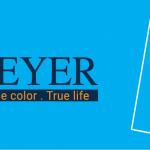THÔNG BÁO: Công ty CP Rohler & Paint Việt Nam hủy dự án Sơn MEYER