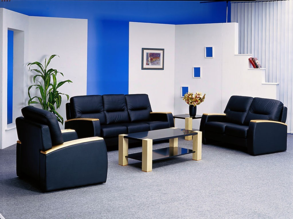light-blue-and-black-living-room